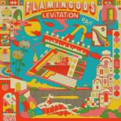 Flamingods - Levitation CD