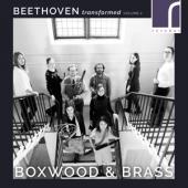 Boxwood & Brass - Beethoven Transformed Volume 2