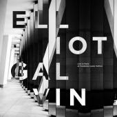 Galvin, Elliot - Live In Paris (At Fondation Louis Vuitton)