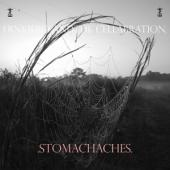 Frnkiero Andthe Cellabration - Stomachaches (Half & Half Silver & Crystal Clear Vinyl) (LP)