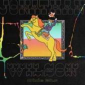 Jonathan Wilson - Dixie Blur (2LP)