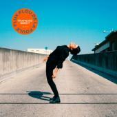 Francoiz Breut - Flux Flou De La Foule (LP)