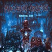 Malevolent Creation - Rebirth Live