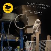 Erlend Apneseth Trio - Salika Molika CD