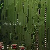 Next Life - Guru Meditation (LP)