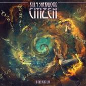 Billy Sherwood - Citizen In The Next Life