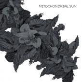 Mitochondrial Sun - Mitochondrial Sun