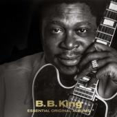 King, B.B. - Essential Original Albums (3CD)