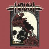 Haunt - Beautiful Distraction (LP)