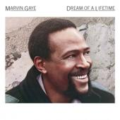 Gaye, Marvin - Dream Of A Lifetime (First Posthumously Release, Partly Motown Recordings)