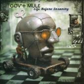 Gov'T Mule - Life Before Insanity (Green & Black Swirled) (2LP)