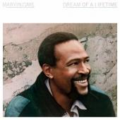 Gaye, Marvin - Dream Of A Lifetime -Clrd- (LP)