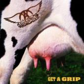 Aerosmith - Get A Grip (Remastered) (cover)