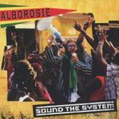Alborosie - Sound The System (cover)