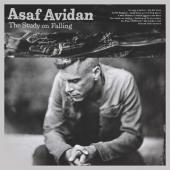 Avidan, Asaf - Study On Falling (LP)