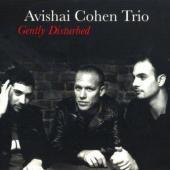 Avishai Cohen Trio - Gently Disturbed (cover)