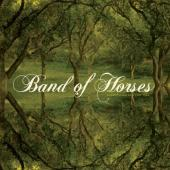 Band Of Horses - Everything All The Time (cover)