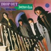 Barracudas - Drop Out With