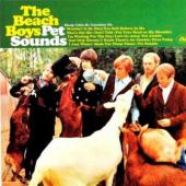 Beach Boys - Pet Sounds (Mono & Stereo) (cover)