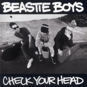 Beastie Boys - Check Your Head (LP) (cover)