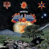 Beta Band - Best of (2CD)