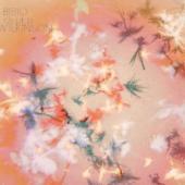 Bibio - Silver Wilkinson (cover)