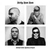 Birdy Nam Nam - Defiant Order Remixes (cover)