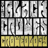 Black Crowes - Croweology (cover)