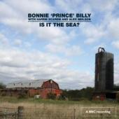 Bonnie Prince Billy - Is It The Sea? (cover)