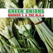 Booker T & The Mg's - Green Onions (cover)