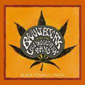 Bjork, Brant And The Low Desert Punk Band - Black Power Flower (LP) (cover)