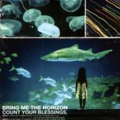 Bring Me The Horizon - Count Your Blessings (LP) (coverà