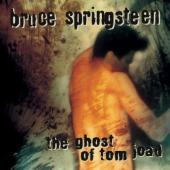 Springsteen, Bruce - Ghost Of Tom Joad (cover)