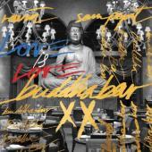 Buddha Bar XX (Mixed By Ravin & Sam Popat) (2CD)