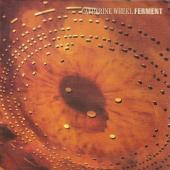 Catherine Wheel - Ferment (cover)
