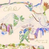 Chris Robinson Brotherhood - Barefoot In the Head (2LP)
