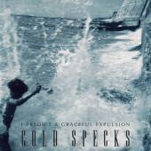 Cold Specks - I Predict A Graceful Expulsion (LP) (cover)