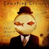 Counting Crows - This Desert Life (cover)