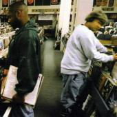 Dj Shadow - Endtroducing (LP) (cover)