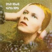 Bowie, David - Hunky Dory (cover)