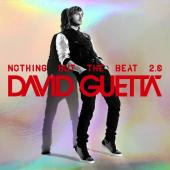 Guetta, David - Nothing But The Beat 2.0 (cover)