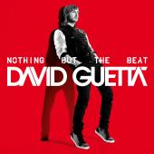 David Guetta - Nothing But The Beat (Cover)