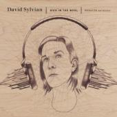 Sylvian, David - Died In The Wool (cover)