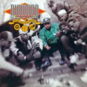 Diamond & the Psychotic - Stunts, Blunts, & Hip Hop (2LP)