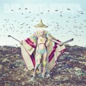 Die Antwoord - Mount Ninji And Da Nice Time Kid (2LP)