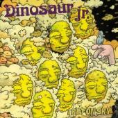 Dinosaur Jr. - I Bet On Sky (LP) (cover)