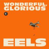 Eels - Wonderful, Glorious (cover)