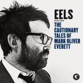 Eels - Cautionary Tales of Mark Oliver Everett (LP)