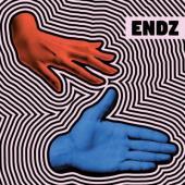 Endz - Shake (LP)