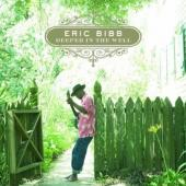 Bibb, Eric - Deeper In The Well (cover)
